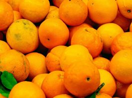 Low vitamin C levels increase the risk of hemorrhagic stroke, research reveals
